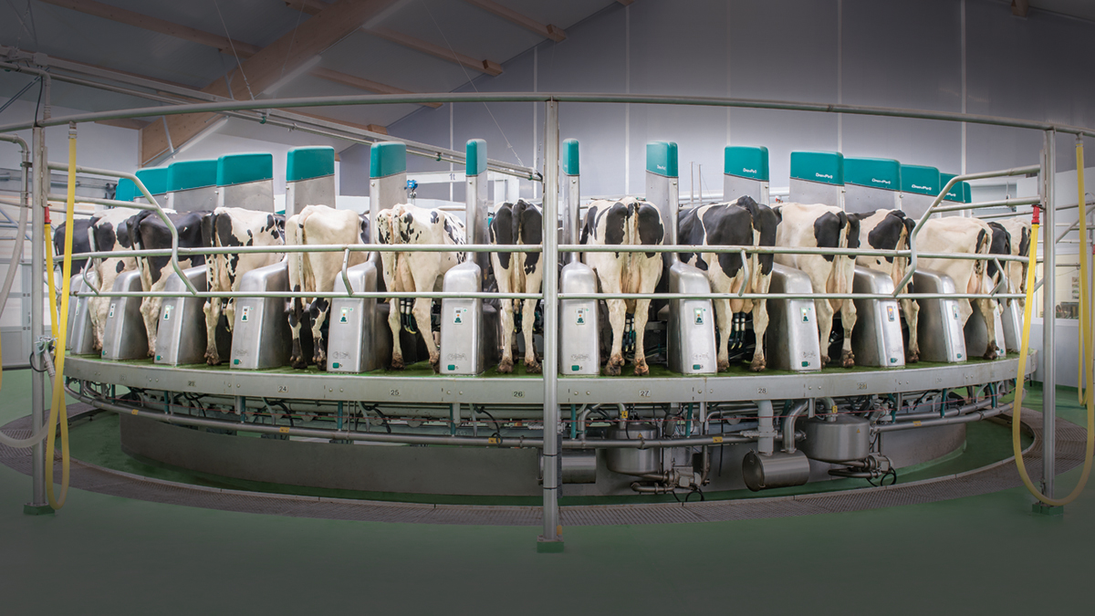 GEA DairyProQ –  Good prospects for high profitability