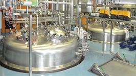 Merck Serono Fermentation web
