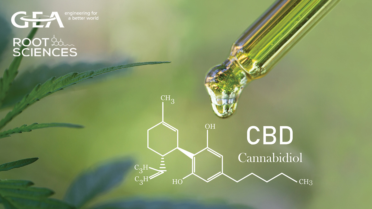 Techniques in cannabinoid extraction & emulsification