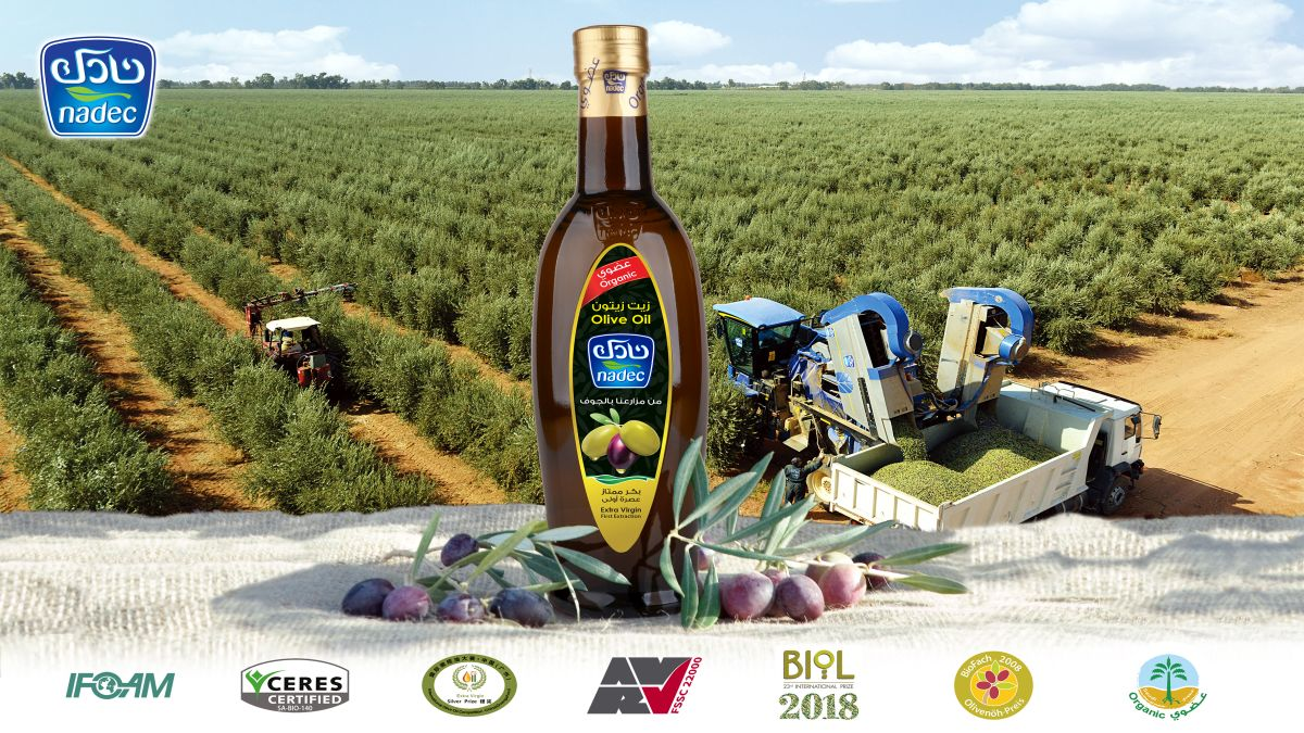 NADEC Group and GEA signed a contract for the most modern olive oil production in Asia. (Photo NADEC)