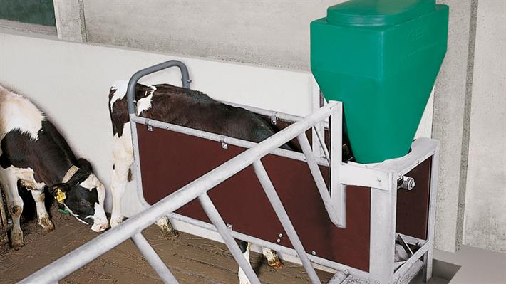 Concentrate Calf Feeder DairyFeed J 1000